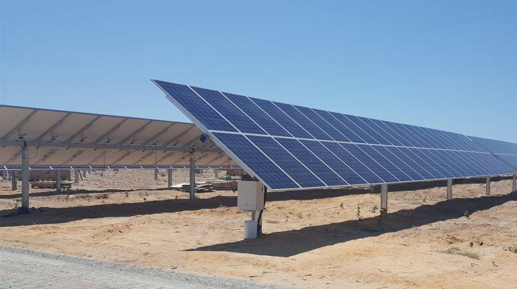 Pv Tech Solar Solar Farm Solar Panel Installation