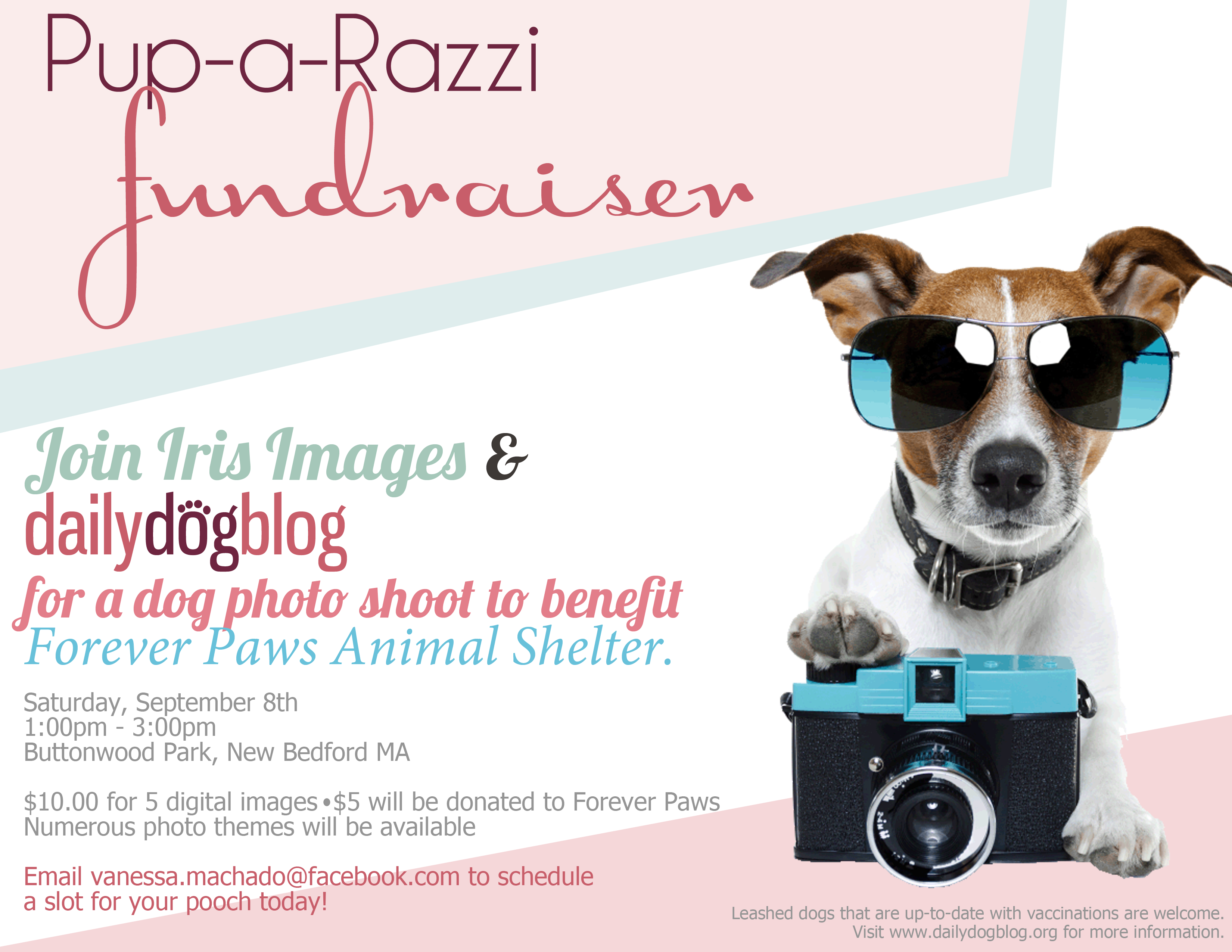 Dailydogblog And Iris Images To Host Pup A Razzi Fundraiser To Benefit Forever Paws Animal Shelter Daily Dog Blog Animal Rescue Fundraising Animal Shelter Fundraiser Animal Shelter