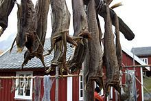 Norway-stockfish has been exported from Lofoten in Norway for at least 1000 years