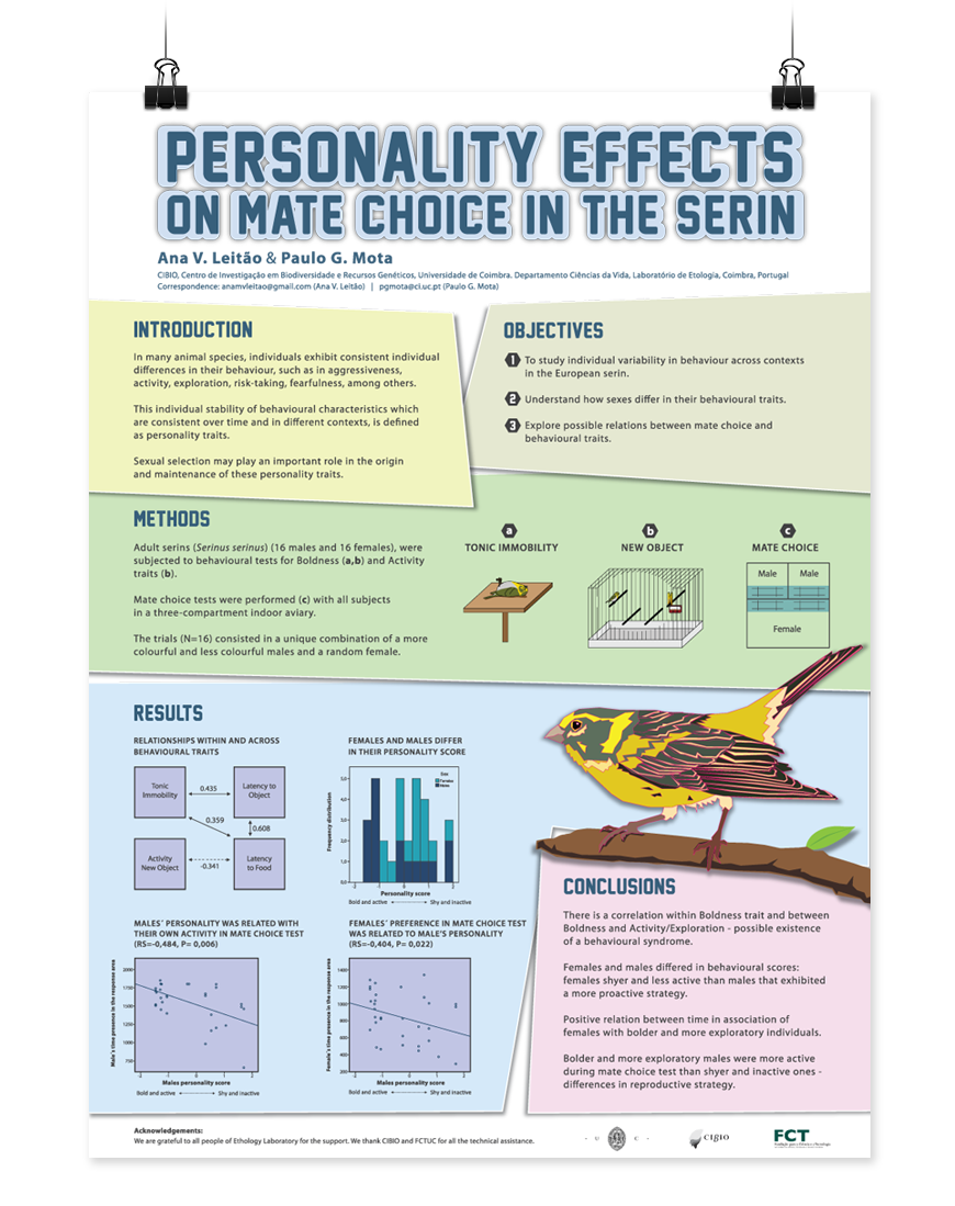 Poster design guidelines - Like The Blocks To Define Sections Design Scientific Research Posters