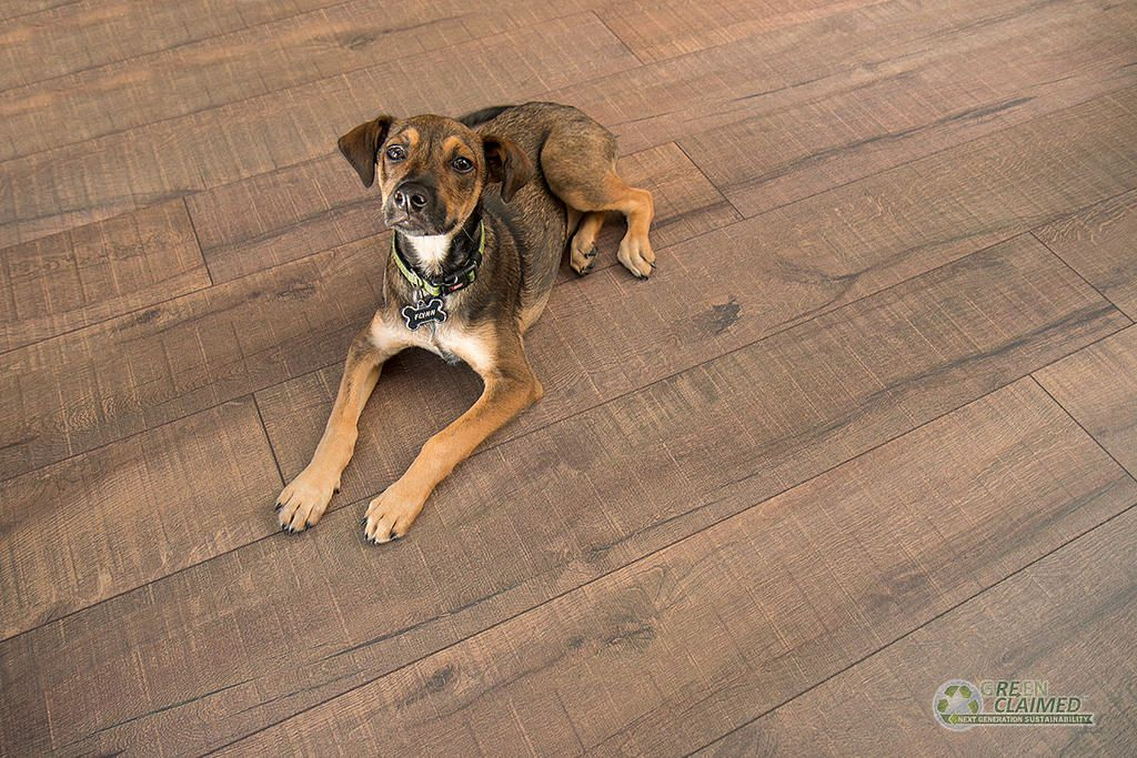 Cali Bamboo Introduces New Inspired Greenclaimed Cork Flooring Line Calibamboo Greenshoots