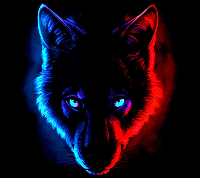 Dark Wolf Colors Red Blue Zwierzęta Tapety
