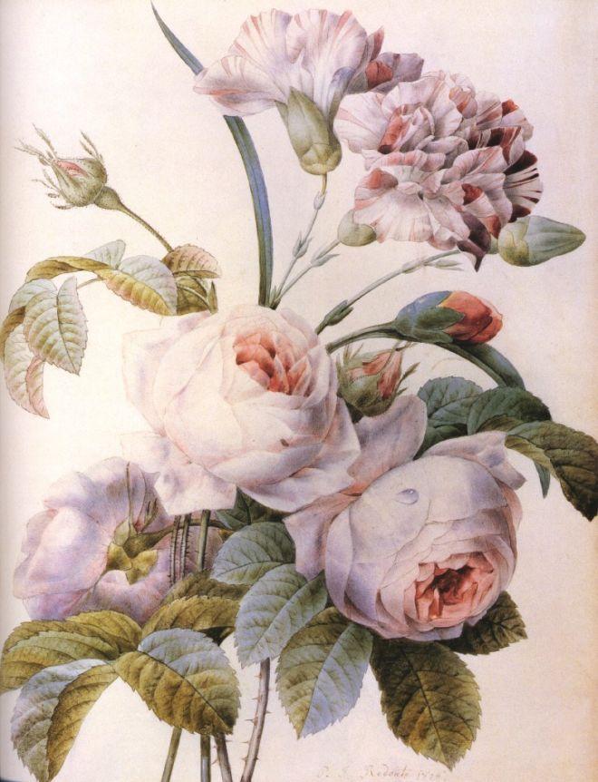 картинки розы красивые рисунки прованс свое