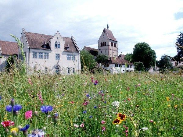 Le Lac De Constance 5 Sites A Visiter En Allemagne Allemagne