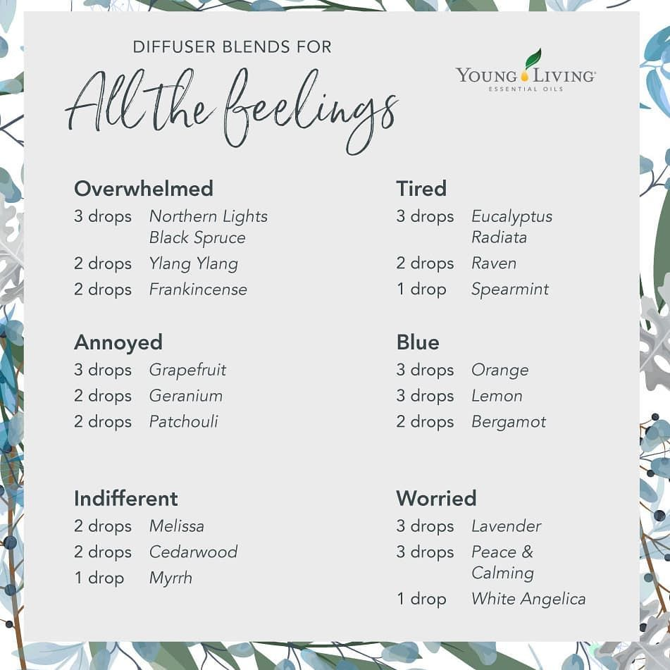 "Young Living Essential Oils on Instagram: ""Winter blues? Try one of these diffuser blends! #relax #relaxing #aromatherapy #yoga #youngliving #yleo #younglivingessentialoils…"""