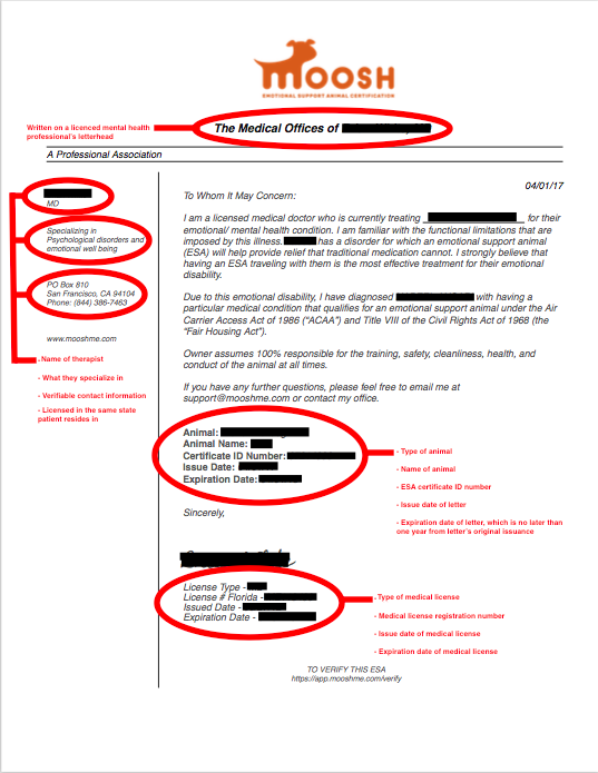 Is My ESA Letter Legitimate? Esa letter, Emotional