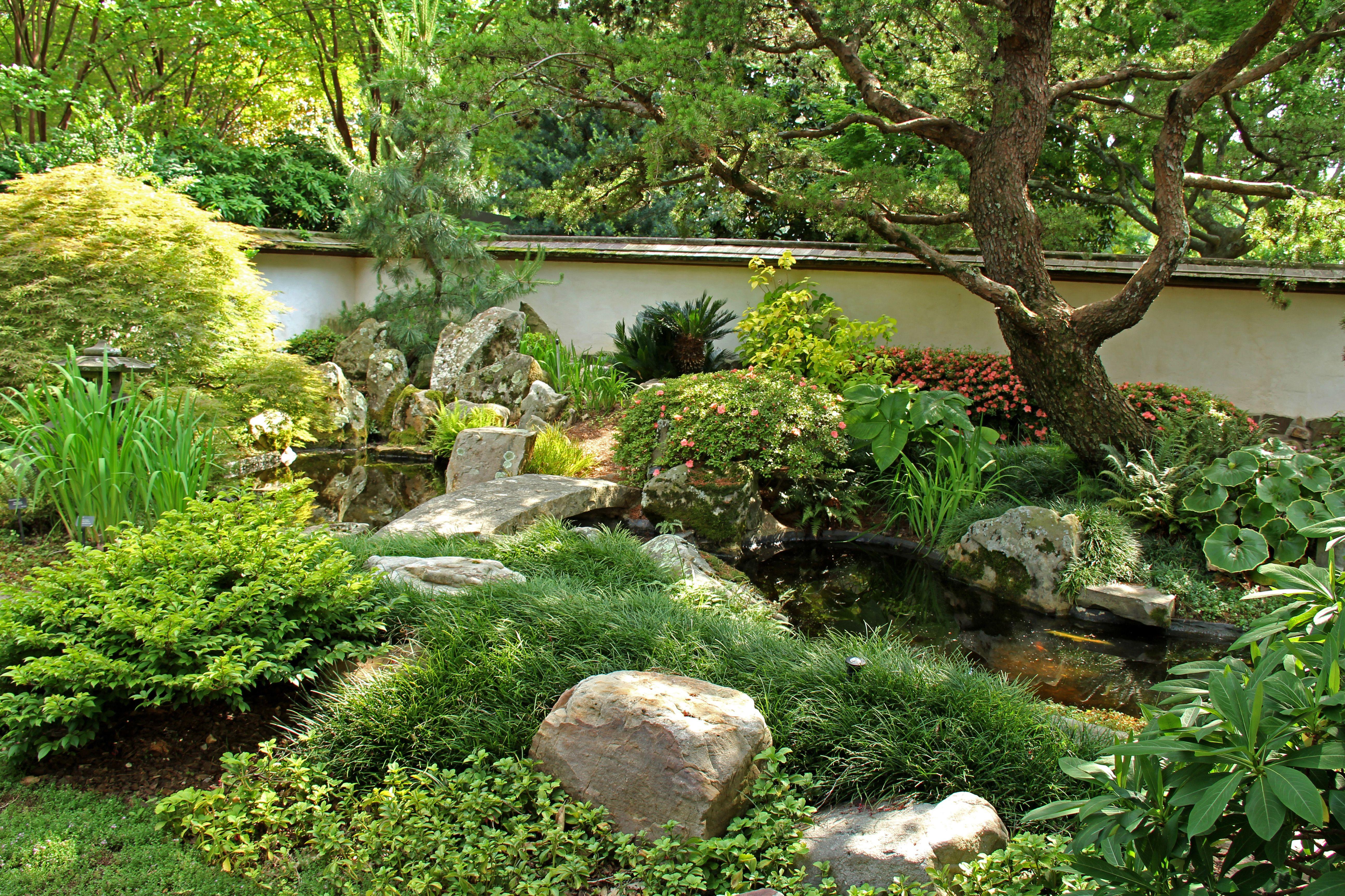 The Beautiful Japanese Garden At The Atlanta Botanical Garden