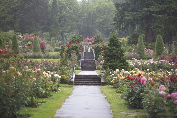 Remind yourself of the beauty that surrounds you - International rose test garden portland ...
