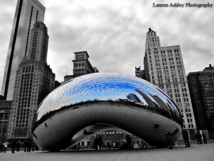 Shiny bean -Chicago