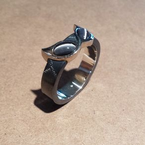 Catwoman Ring By Paul Klecka Gimme Pinterest