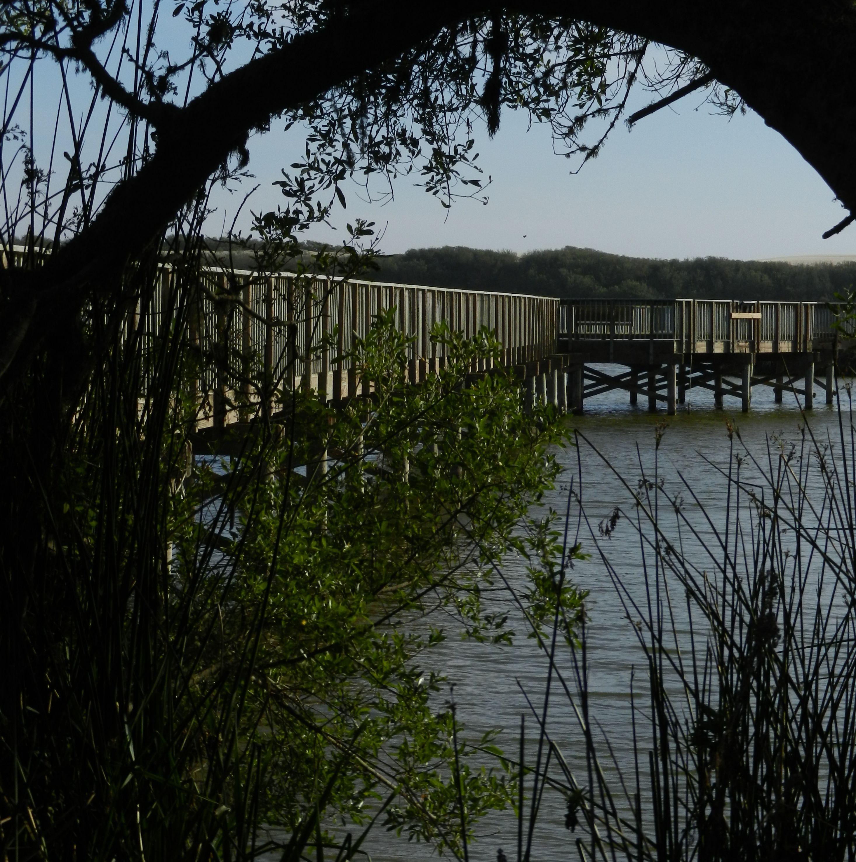 Oso Flaco Lake © Hélène VANLATHEM