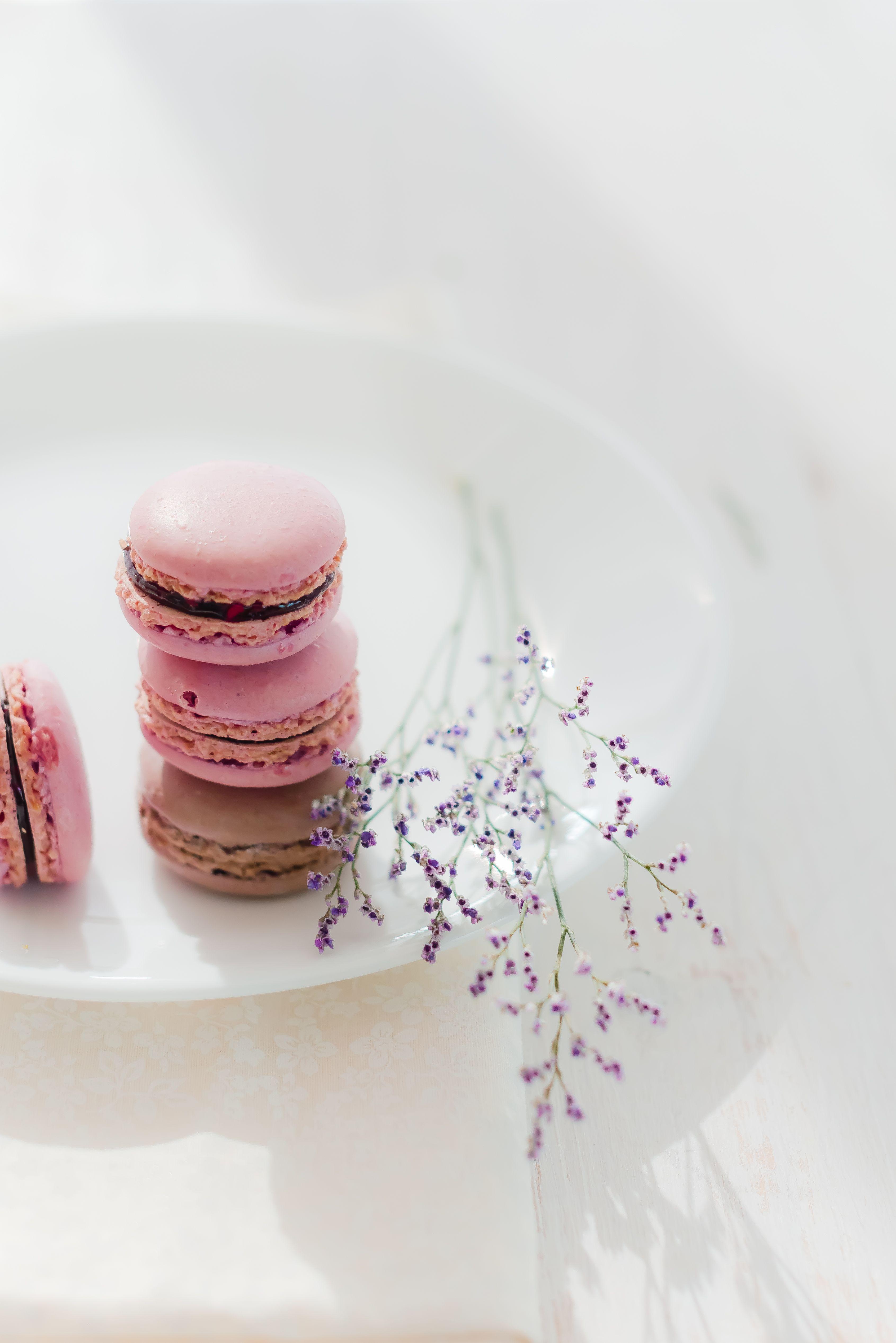 Cranberry Chocolate Macarons Food Photography