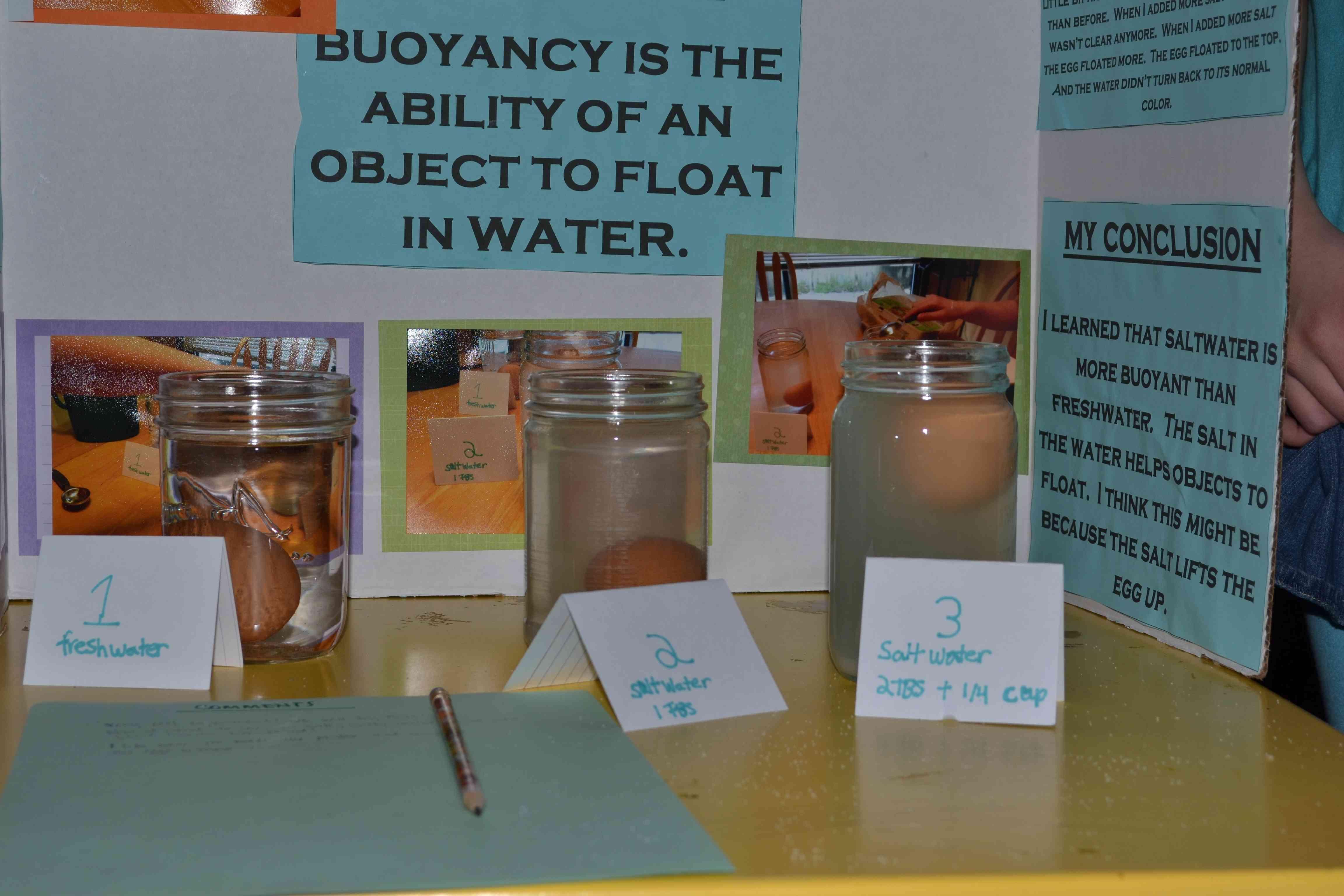 Our Science Fair