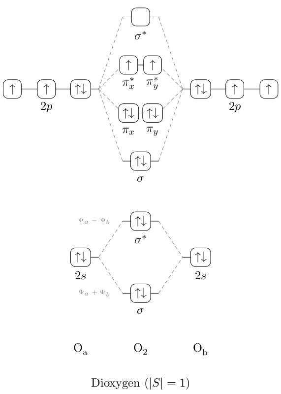 O2 Molecular Orbital Energy Level Diagram Diagram Pinterest