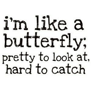 Pin By Nine Is On Butterfly Is Butterfly Quotes Sarcastic Quotes Funny Funny Quotes