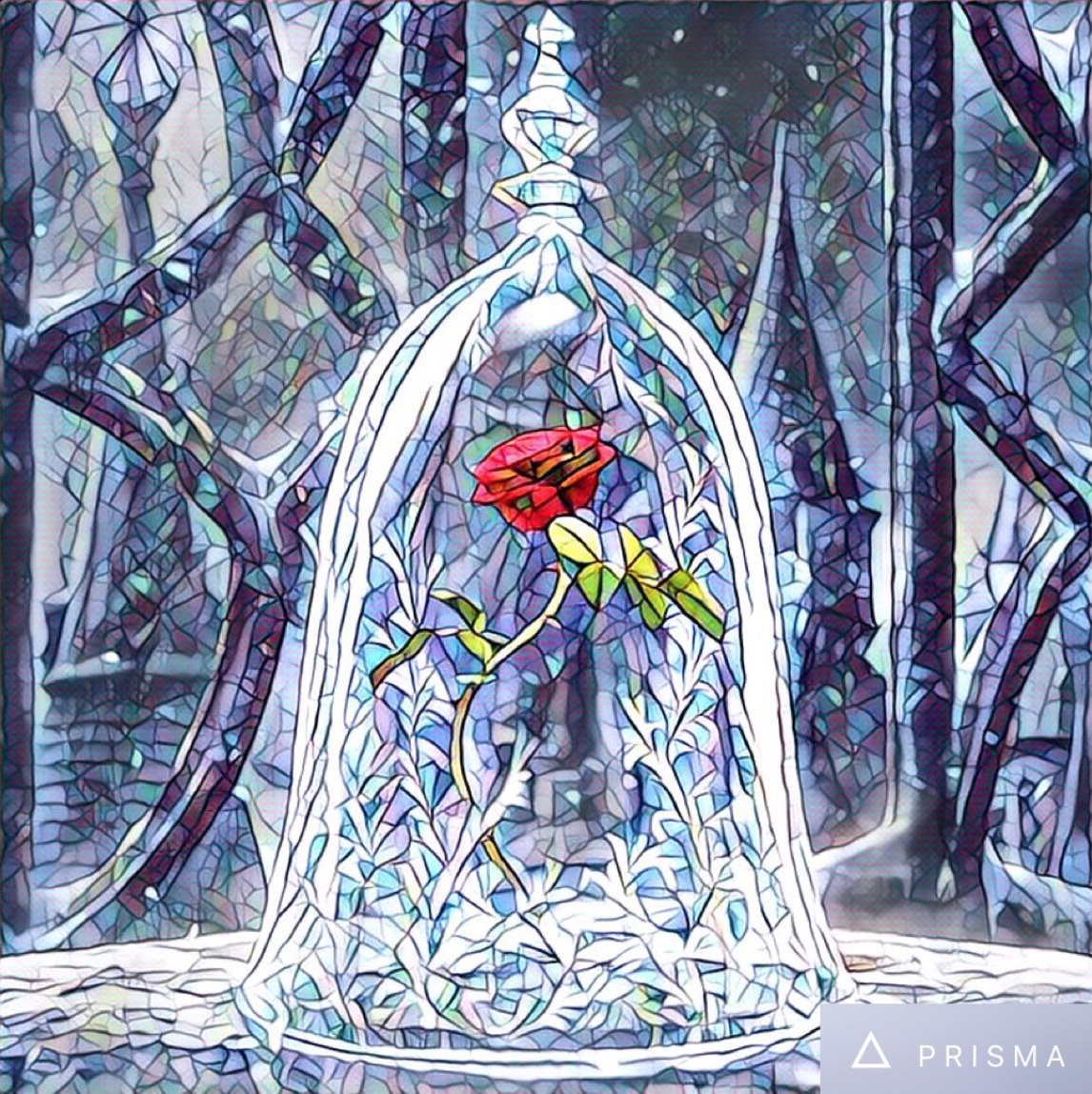 Beauty And The Beast Enchanted Rose In Stained Glass Window