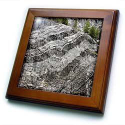 """Alaska, Glacier Bay NP, Limestone cliffs, glacier - US02 BJA0178 - Jaynes Gallery - 8x8 Framed Tile by 3dRose. $22.99. Inset high gloss 6"""" x 6"""" ceramic tile.. Dimensions: 8"""" H x 8"""" W x 1/2"""" D. Cherry Finish. Keyhole in the back of frame allows for easy hanging.. Solid wood frame. Alaska, Glacier Bay NP, Limestone cliffs, glacier - US02 BJA0178 - Jaynes Gallery Framed Tile is 8"""" x 8"""" with a 6"""" x 6"""" high gloss inset ceramic tile, surrounded by a solid wood frame with pr..."""