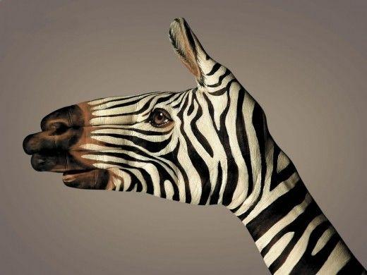 Wild Animal Hands Painting And Body Art Photofunblog Com Creative Advertising Hand Art Animals