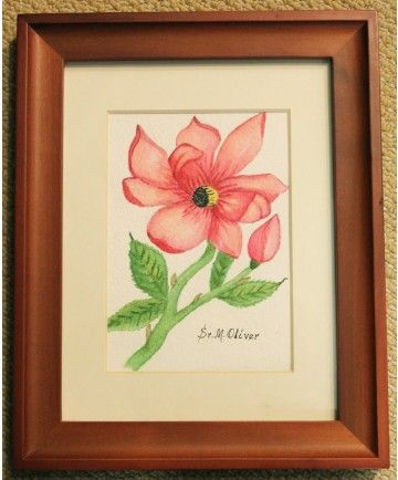 """""""A Pink Rose"""" original watercolor by Sister Mary Oliver Reising"""