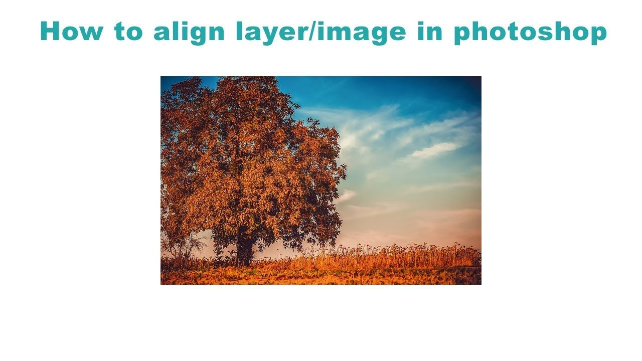 How to align layer to artboard in