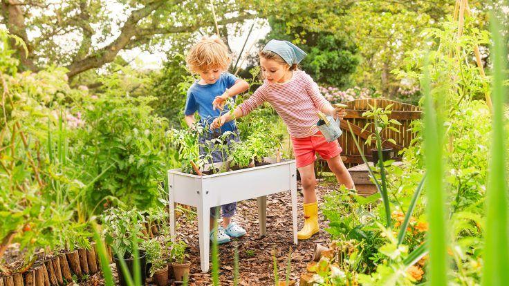 MiniHochbeet, Hochbeet für Kinder, Garten mit Kindern