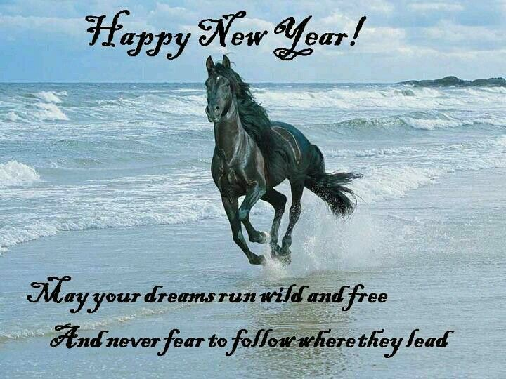 Happy New Year Horse Images 5