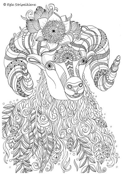 A3 Coloring Pages Colors Of Life Coloring Pages Animal Coloring