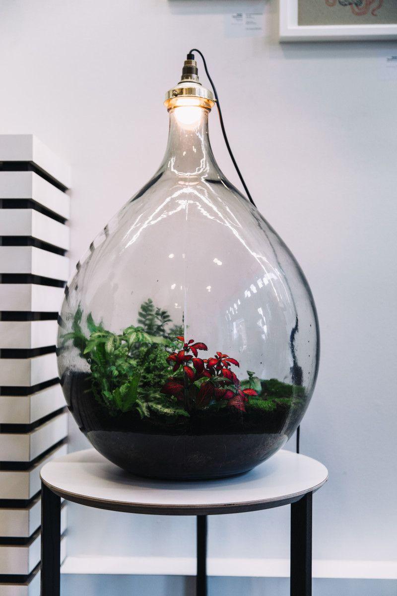Spruitje Big Brother terrarium l& & Spruitje Big Brother terrarium lamp | ? this! | Pinterest ... azcodes.com