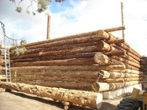 How to build a butt and pass log cabin using rebar for Butt and pass log home