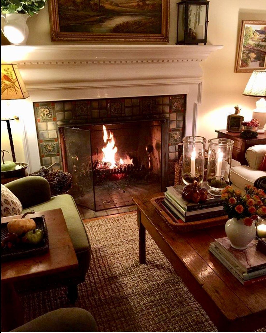 Traditional Home Cozy Living Room Decor