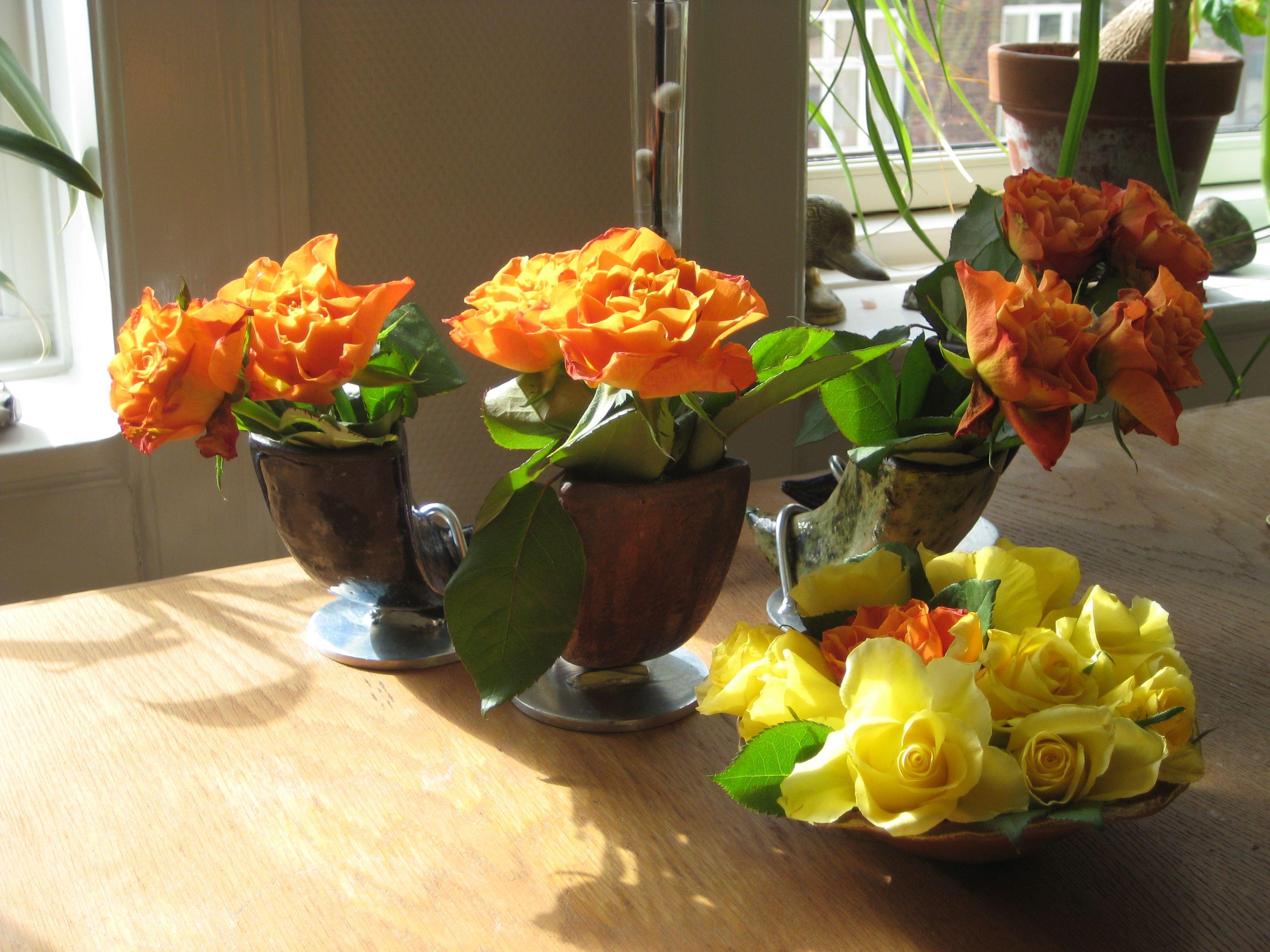 Skønne blomster i mine keramikhorn.