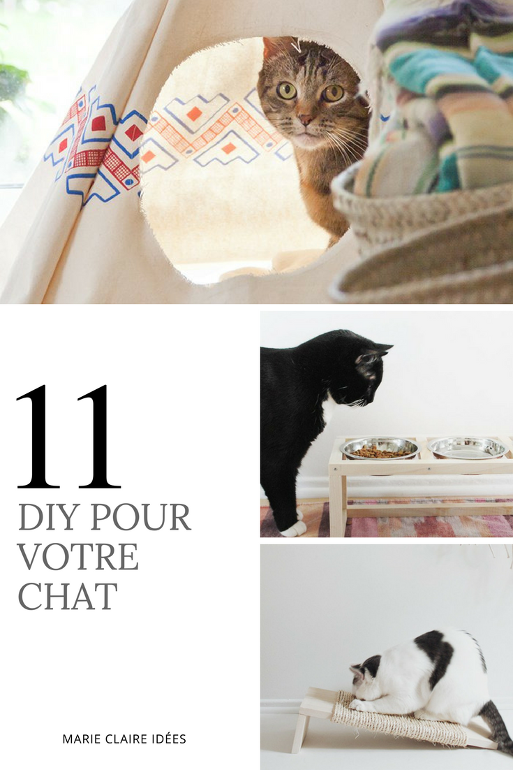 diy chat 11 accessoires et jouets faire soi m me pet product pinterest chat. Black Bedroom Furniture Sets. Home Design Ideas