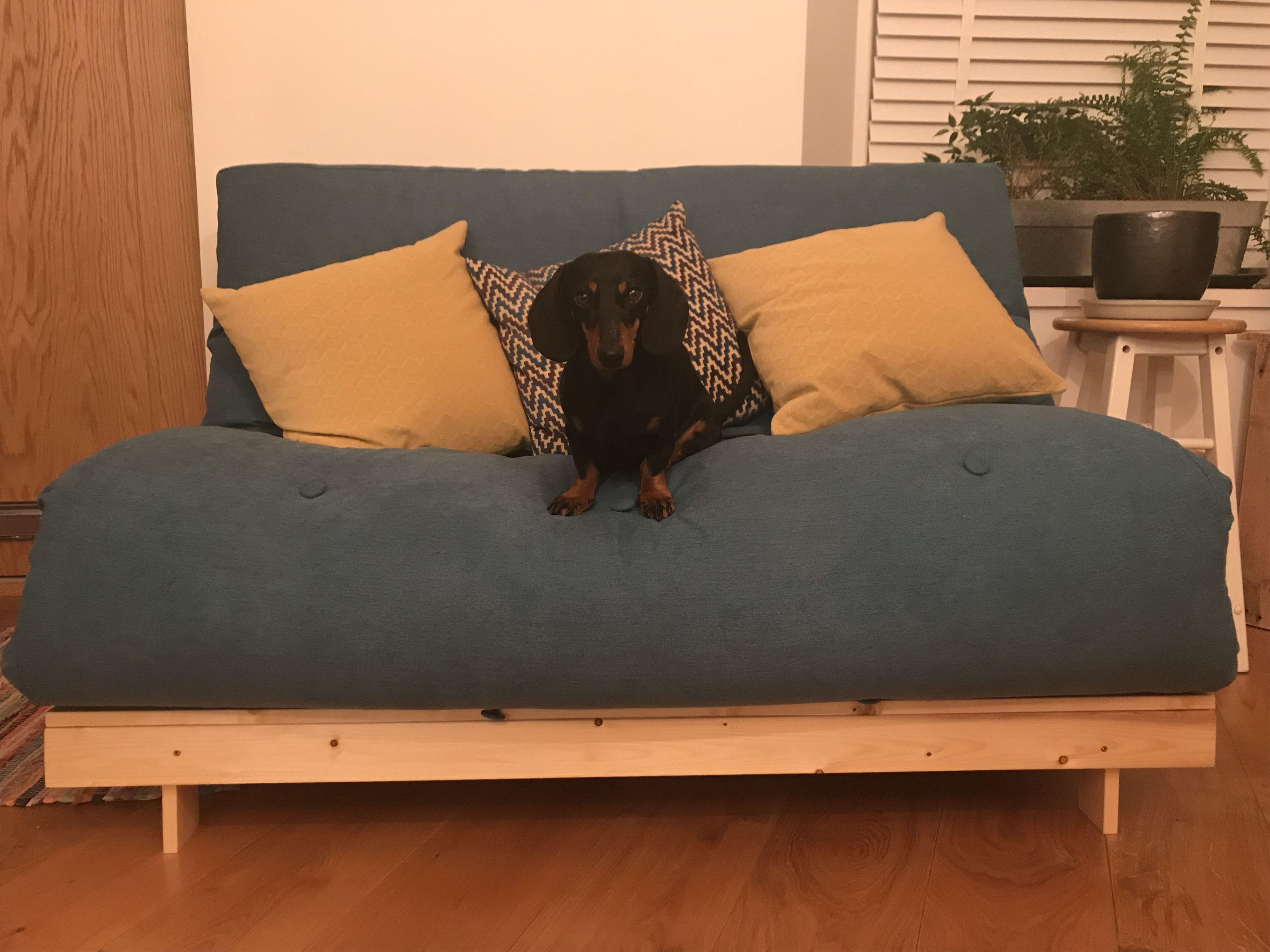 Magnificent Senjo Double Futon Sofa Bed Fabric Choice And Uk Wide Machost Co Dining Chair Design Ideas Machostcouk