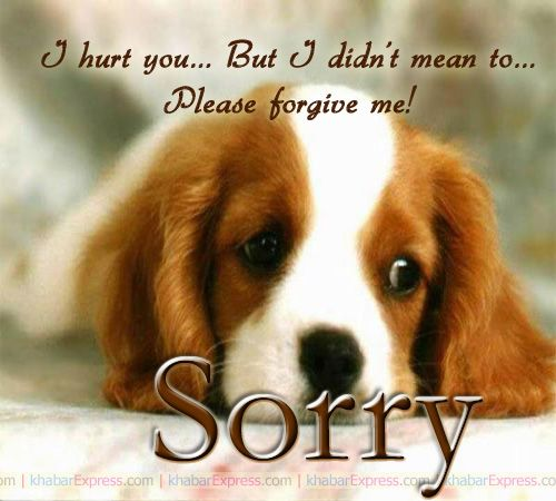 Please Forgive Me Quote: Please Forgive Me I Am Sorry