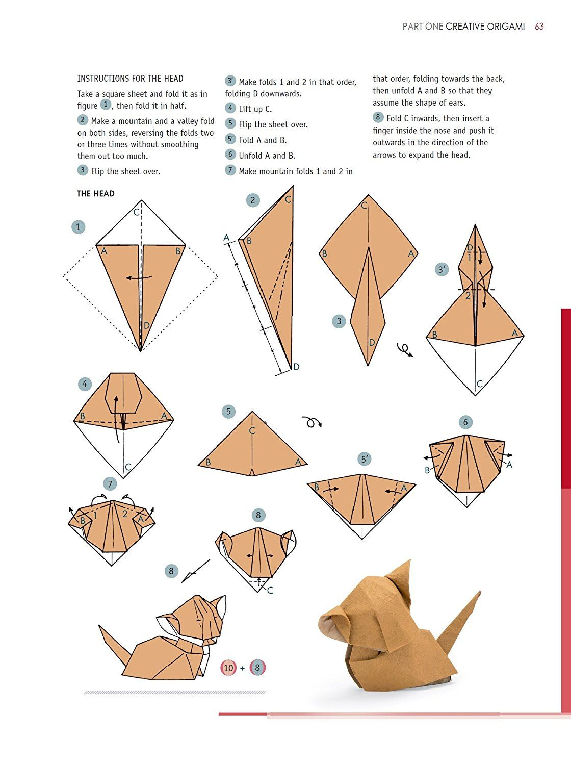Fabulous Labeled Scorpion Diagram Diagrams Showing How Cover Page The Origami Wiring 101 Capemaxxcnl