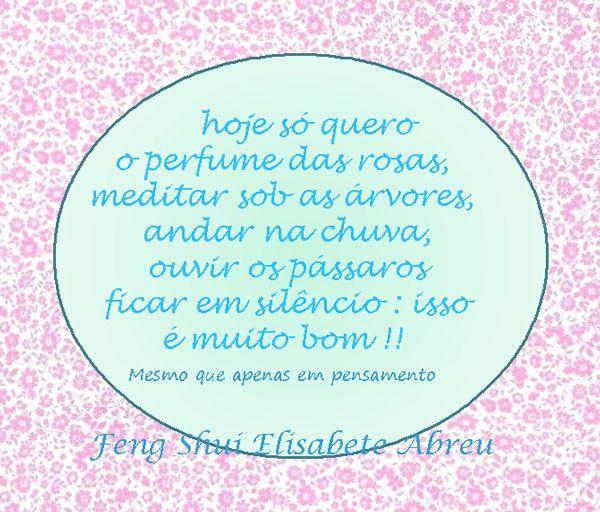 Pensamento positivo  e Femg Shui www.elisabeteabreu.com.br