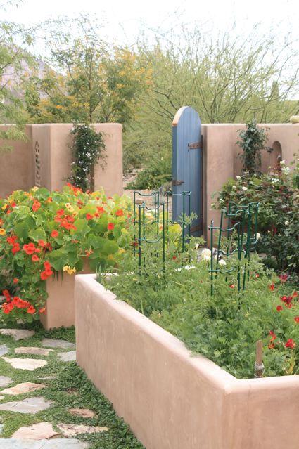 Cesar Mazier Raised Vegetable Garden Backyard Vegetable