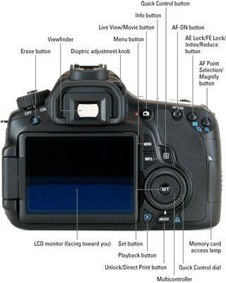 Canon EOS 60D For Dummies Cheat Sheet - Dummies | Photography
