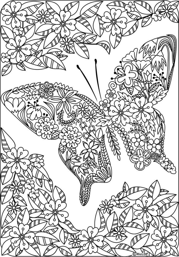 Twenty Coloring Pages for Grown-Ups | Adult coloring, Butterfly and ...