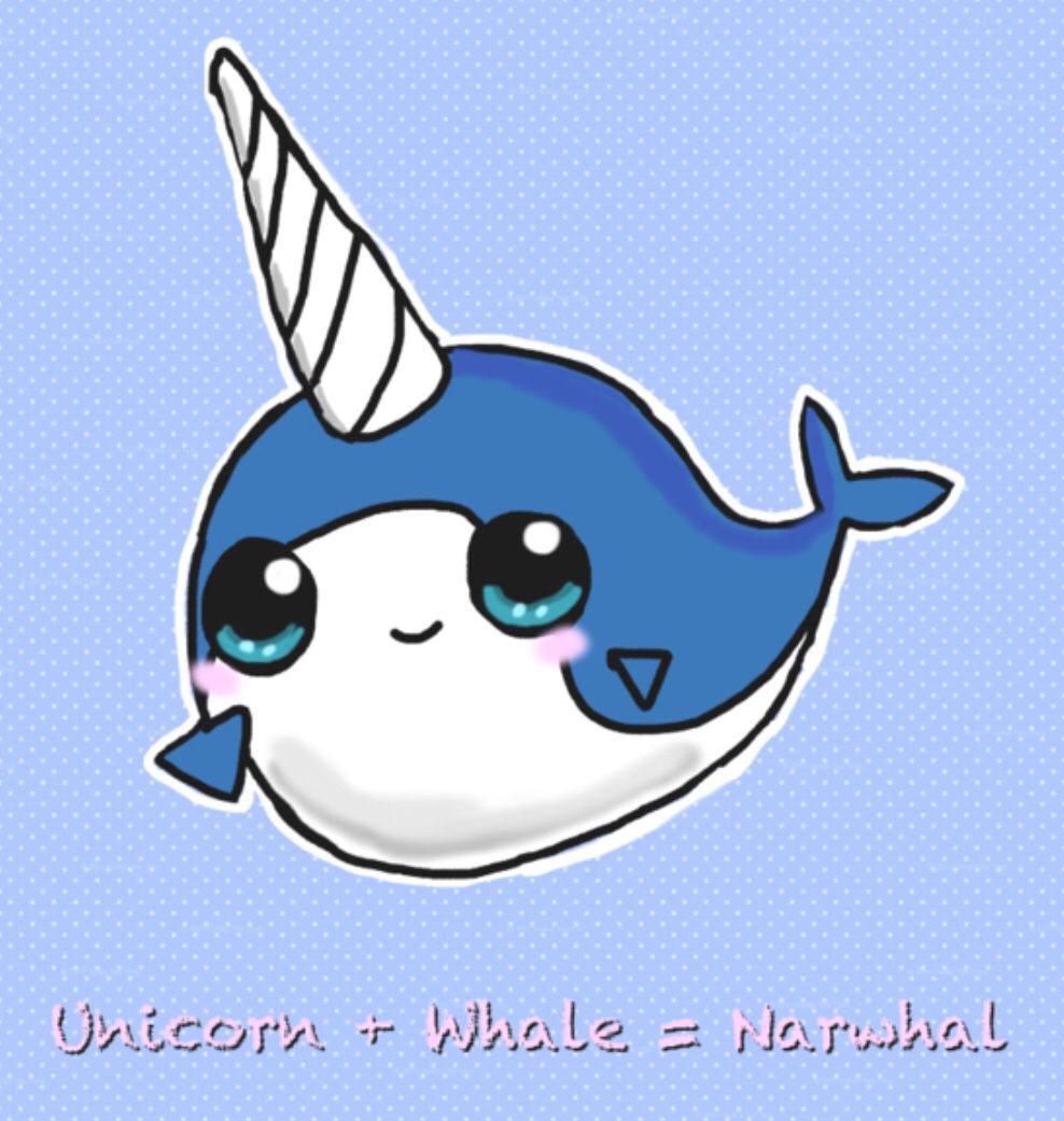Narwhals Are Awesome Cute Narwhal Cute Animal Drawings Narwhal Pictures