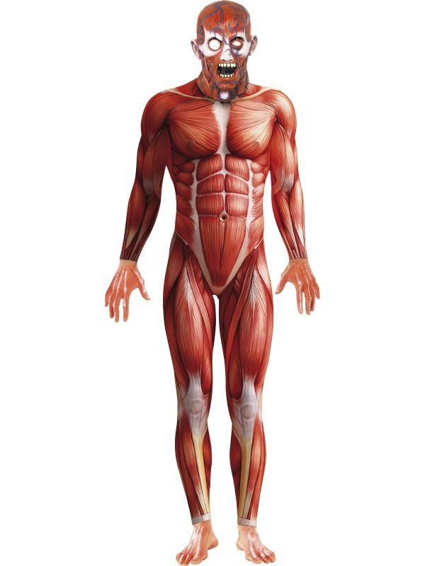 Déguisement anatomie humaine adulte | Deguisement de zombie ...
