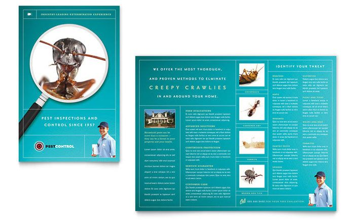 Pest Control Services Brochure Design Template by StockLayouts - pamphlet sample