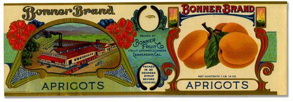 Bonner-Brand-Fruit-Label_LO | American Grocery Graphics | Pinterest