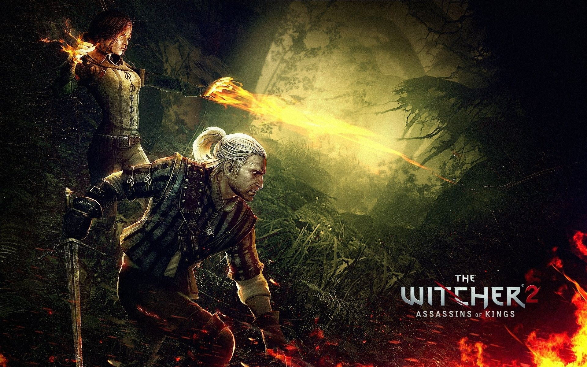 The Witcher Wallpaper 42022 1920x1200 Px Hdwallsource Com The Witcher Witcher 2 Assassin