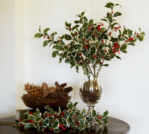 holly branches