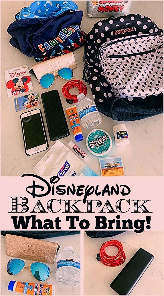 Photo of Disneyland Backpack What To Bring!
