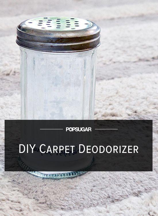 Bad Smell Begone Diy Carpet And Rug Deodorizer Spring