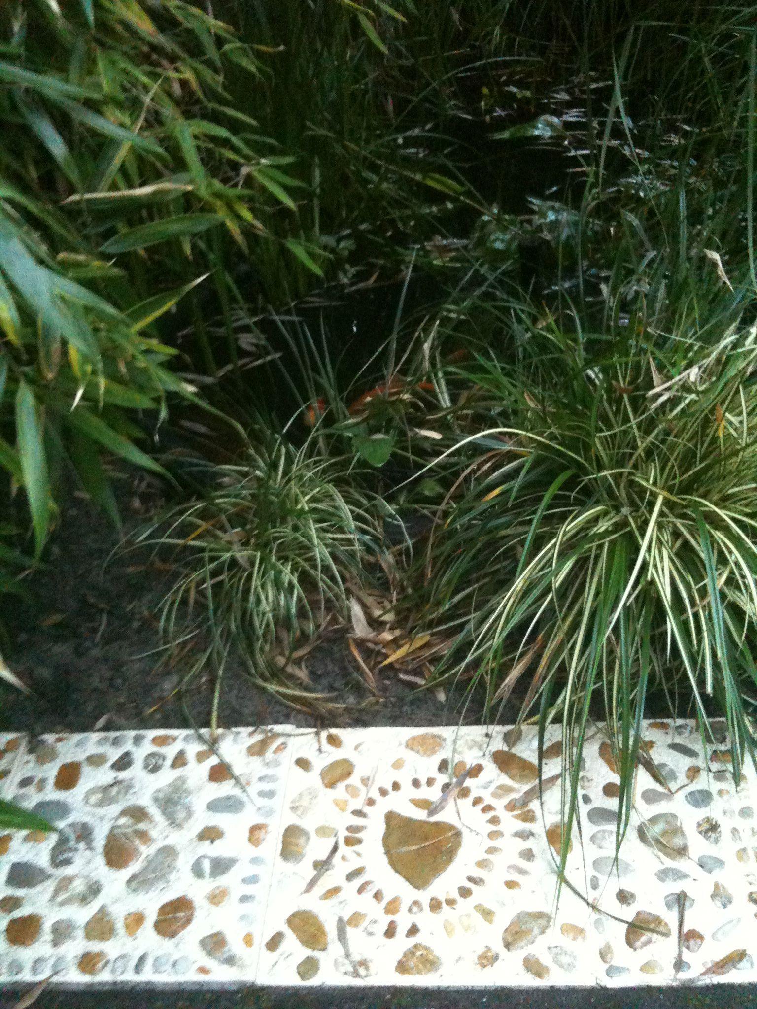 Mijn tuintegels in een tuin in Apeldoorn