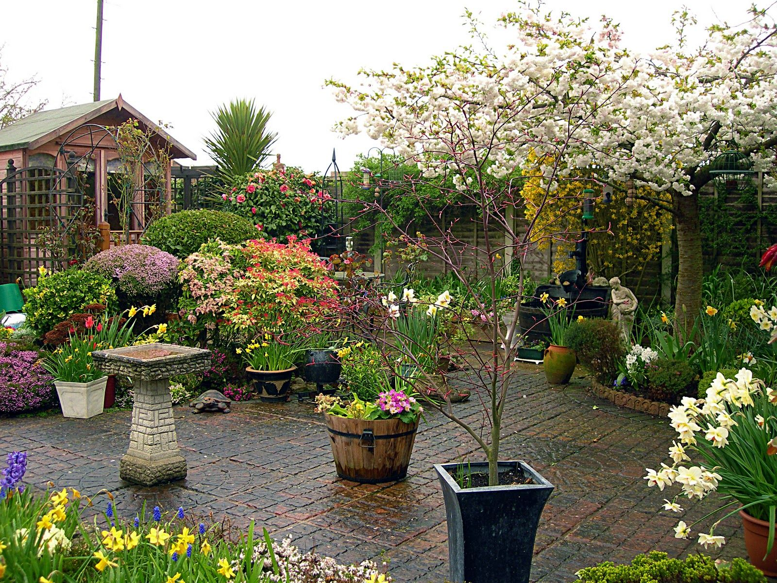 Beautiful Home Gardens | back home to relax in my beautiful home and garden  with my
