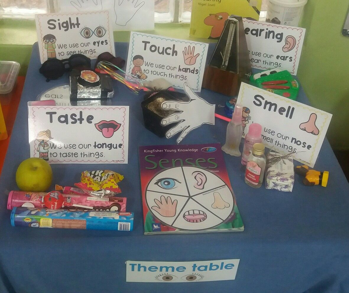 5 Senses Fold And Learn Kindergartenklubcom
